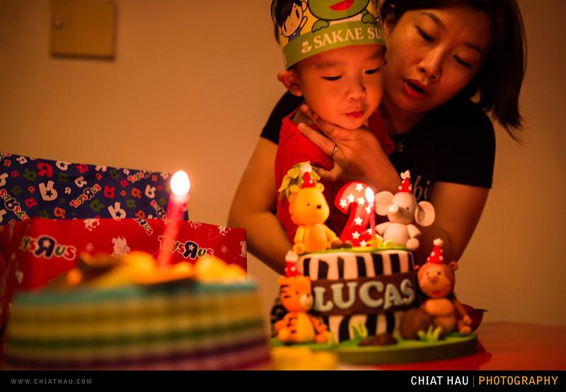 Lucas_2_Years_Old_Celebration-20.jpg