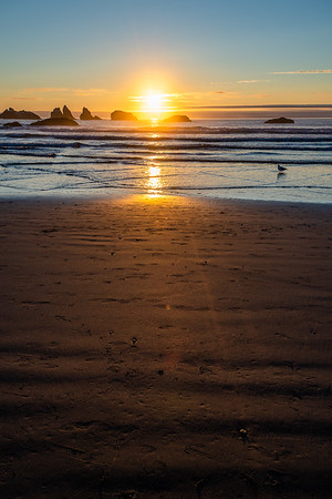 Seascapes   Bandon-by-the-Sea, Oregon 2