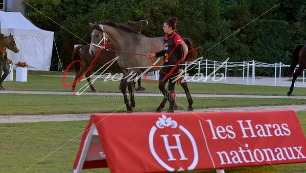 2015 UZES, France - 01