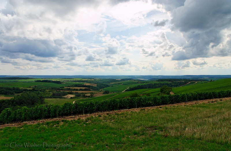 A valley in Champagne, France stretches to the horizon under a cloudy sky.