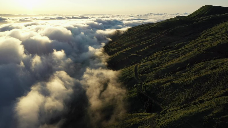 Available in 4K - Aerial video clip of low clouds at sunrise at Pico Island.