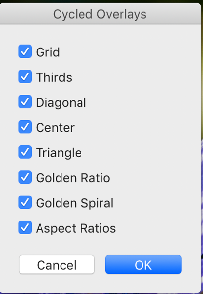 Selects the Grid Overlays that you can cycle though  Customizing the Grid Overlay