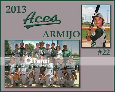 Aces Team 2013