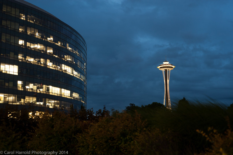 Pan-pacific-hotel-carol-harrold-photography-9.jpg