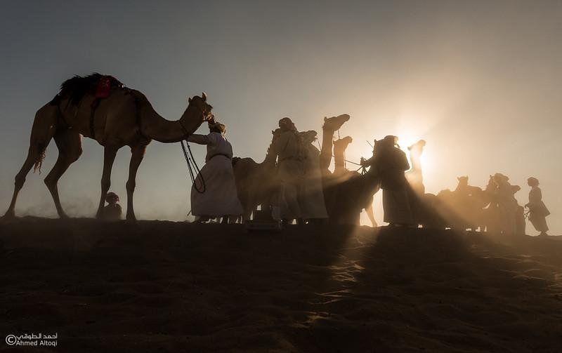IMGL6324-1- Camel Race.jpg