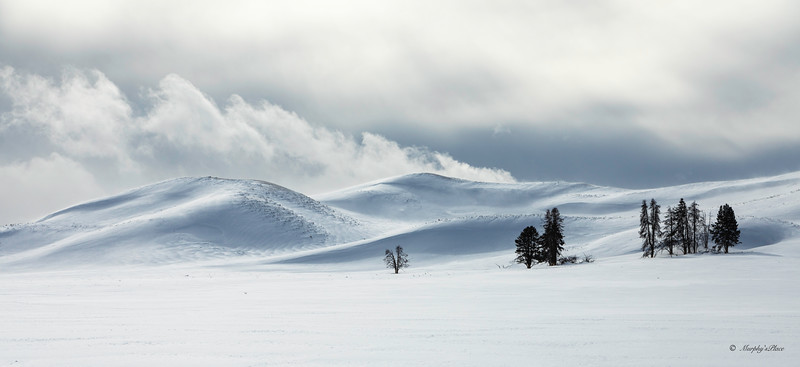 Winter in Yellowstone NP 2020