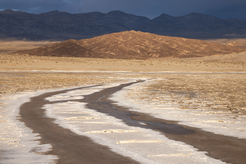 Dark Desert Highway