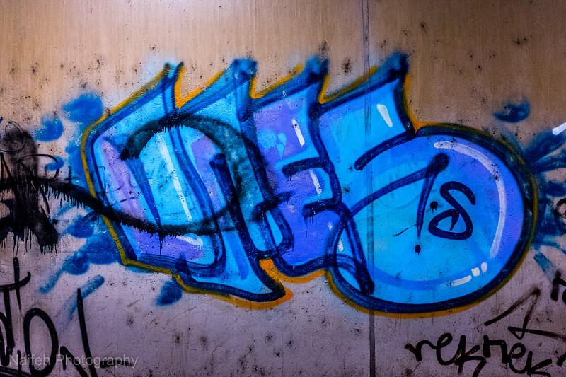 DSCF8357.jpg