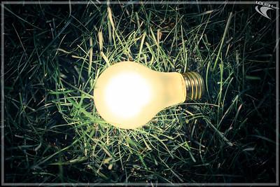 2013-09-03 Lightbulb