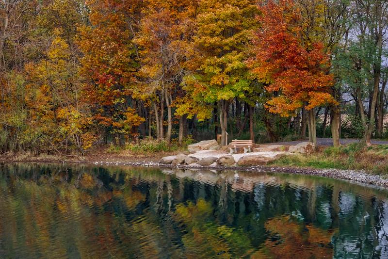 1091 - Autumn 2016 - Ephrata Township Pond (p).jpeg