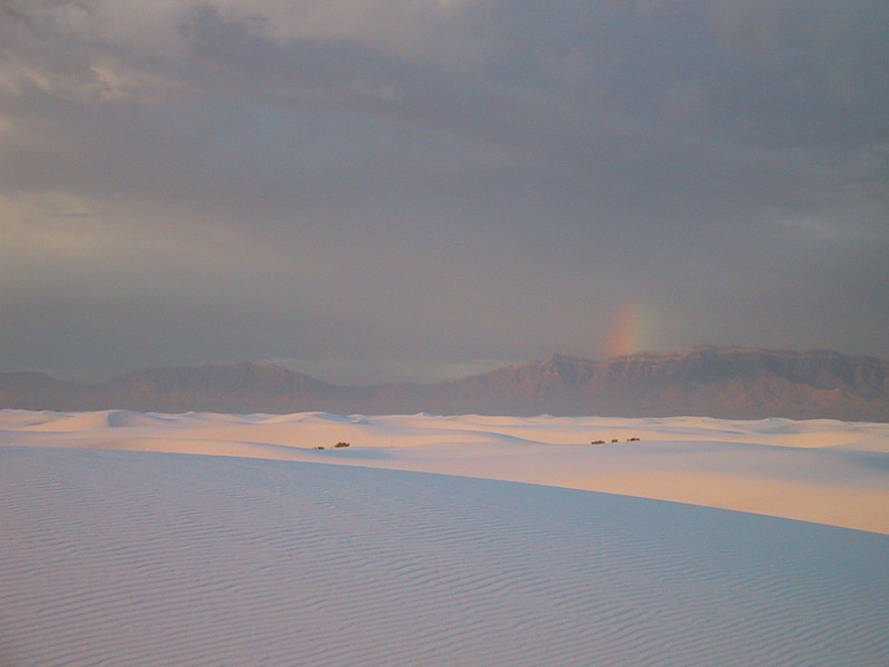 Moondog at White Sands