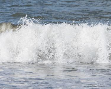 Ocean - PNW