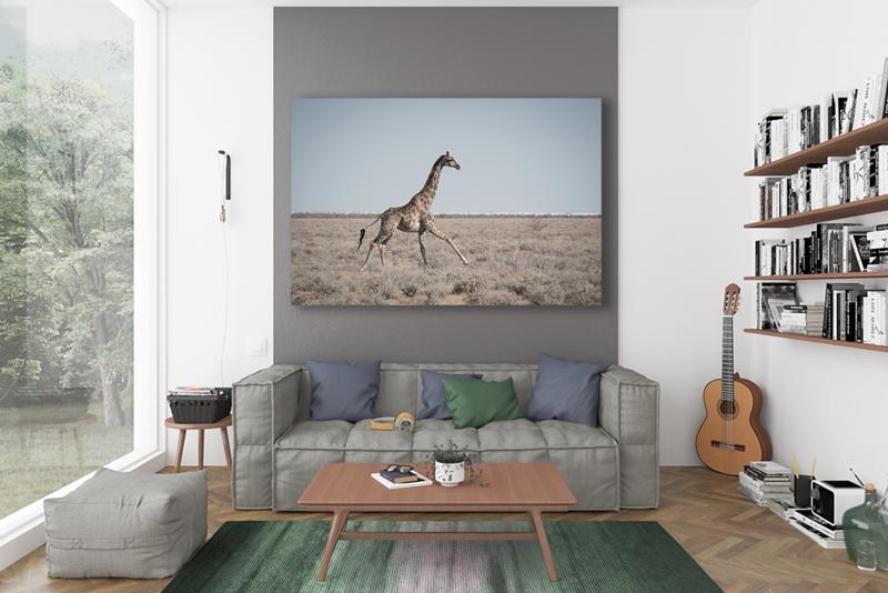 LRoomGiraffe.png