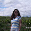 Yakima Valley Wineries, WA