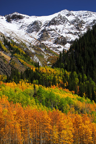 Colorado Color-17.jpg