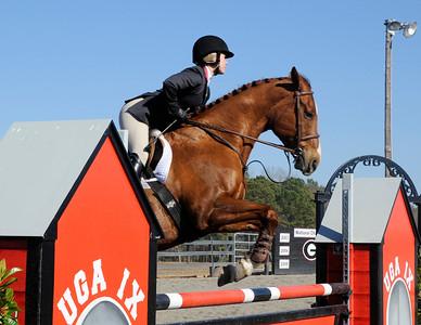 2014 equestrian