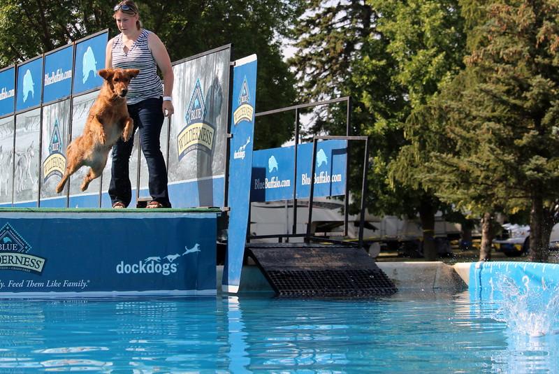 2015.8.6 Winnebago County Fair Dock Dogs (90).JPG