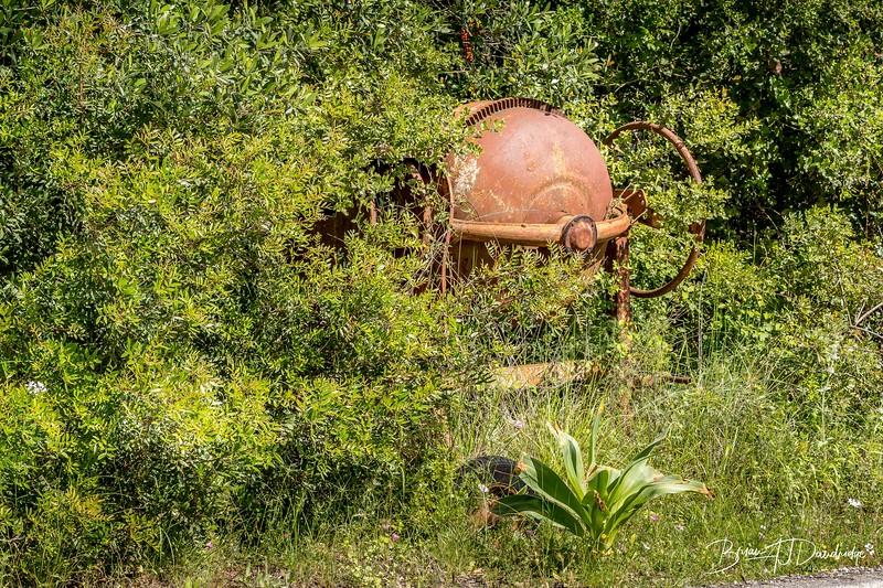 Rusty Roadside Relic