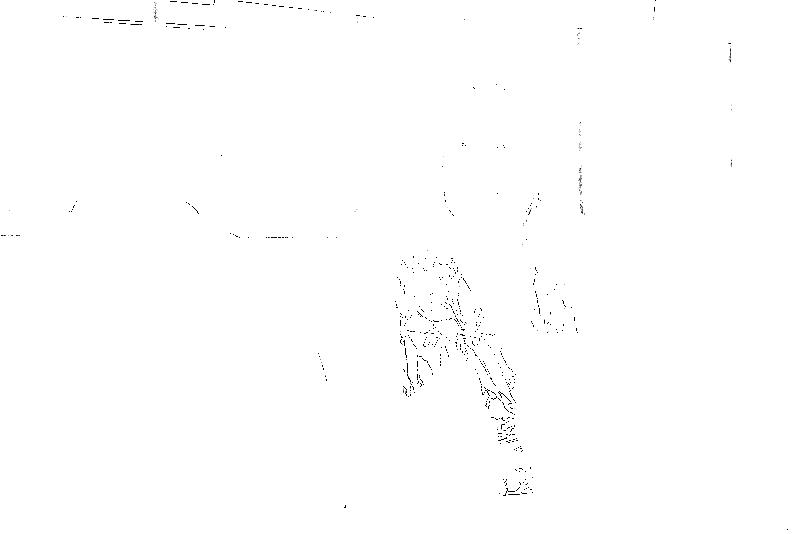 DSC08992.png