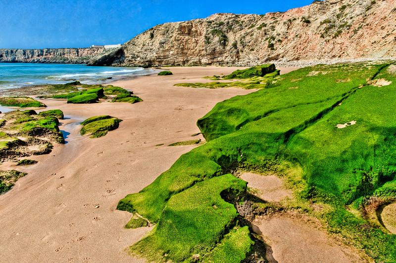 OCEAN, BEACH, CLIFF, MOSS, SKY--PORTUGAL
