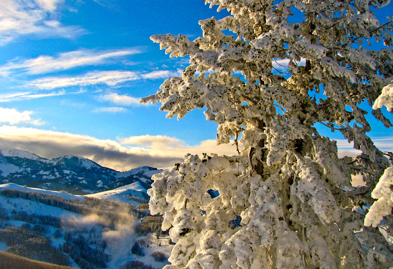 SNOW-PASTE