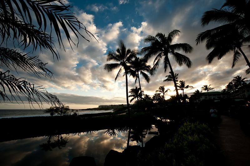 1002_Kauai_450.jpg
