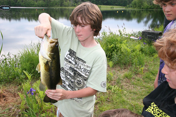 The Bass Master
