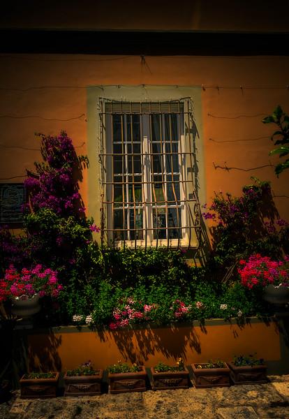 window_0730.jpg