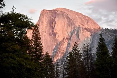 Mariposa Big Trees & Yosemite National Park-Oct '18