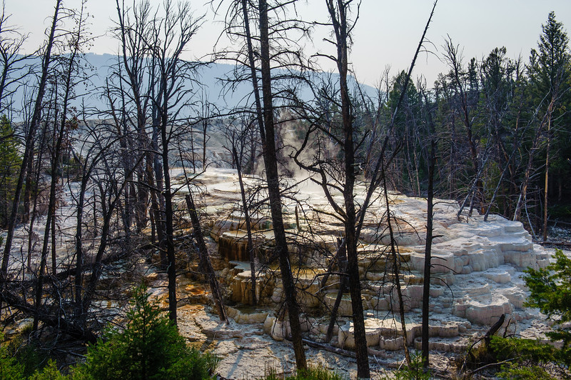 20130816-18 Yellowstone 197.jpg
