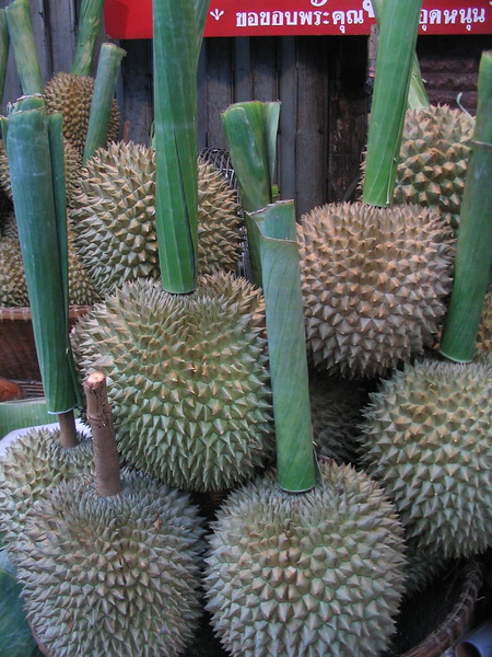 The 'King of Fruit' - durian