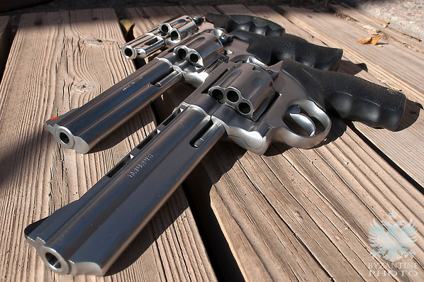 Revolvers in Natural Light (2)