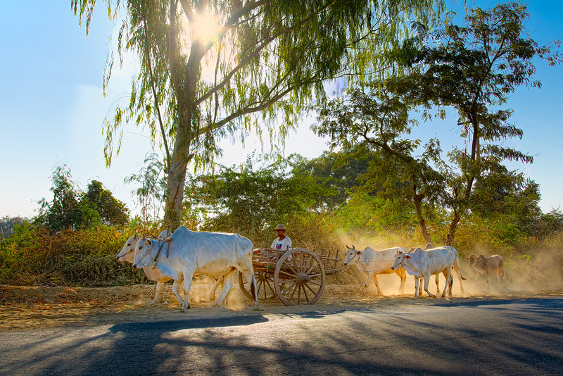 045-Burma-Myanmar.jpg