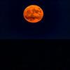 MoonSandbridge-014