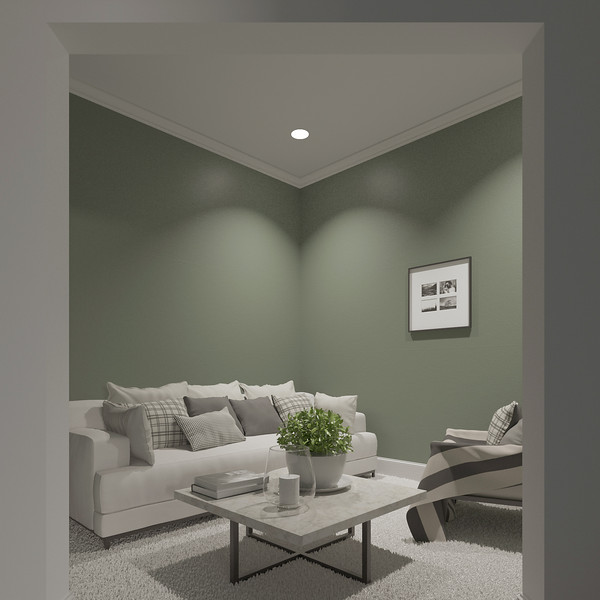velux-gallery-living-room-118.jpg