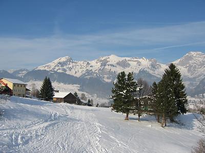 Alpenrose 2005