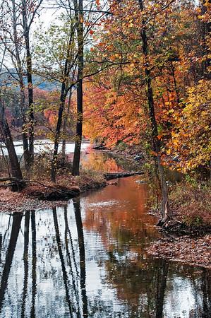 A Harriman State Pk Autumn