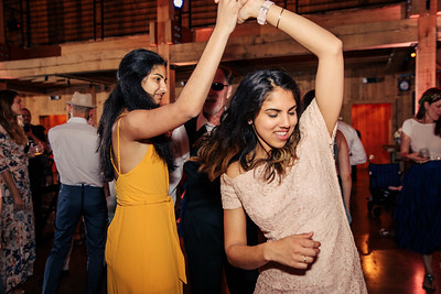 David and Desi wedding reception 2