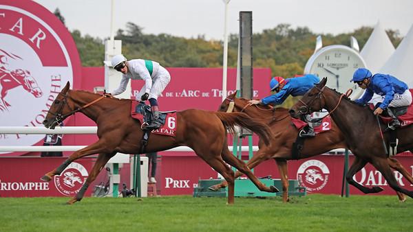 7 Qatar Prix Du Cadran Gr1 4000m