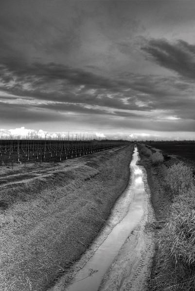 Irrigation Canal - Near Bevilacqua, Crevalcore, Bologna, Italy - December 1, 2009