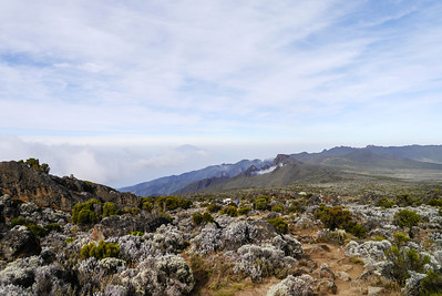 Kilimanjaro - Day 4