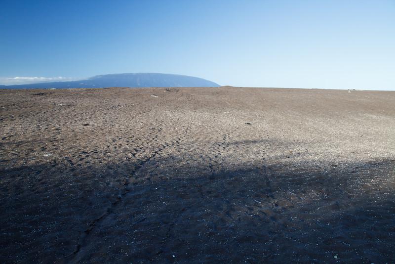 Playa Tortoga Negra, Isabela, Galapagos (11-24-2011)-2.jpg