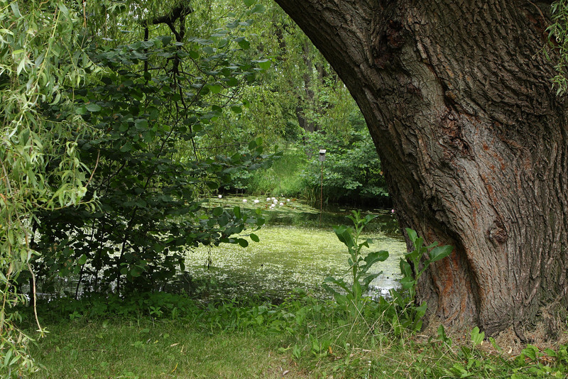 Parque Botanico