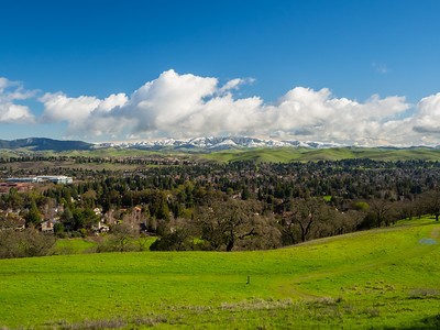 Bishop Ranch Regional Preserve - San Ramon, CA