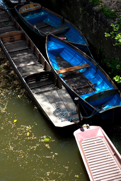 Oxford Boats F4790.jpg