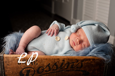 Trent Newborn
