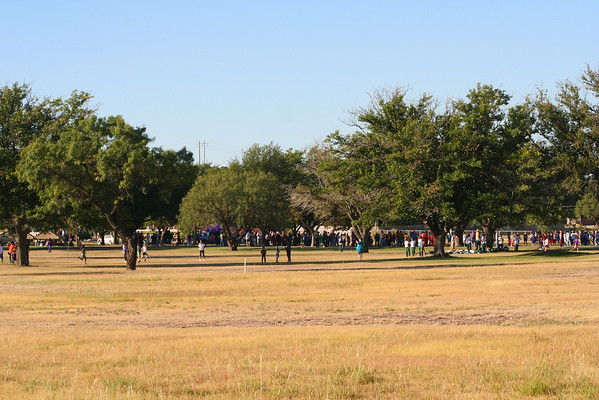 Cross Country in Ozona