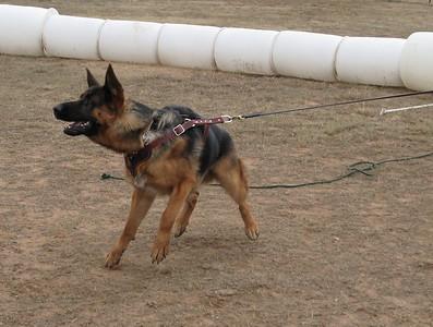 Amarillo Training 2009