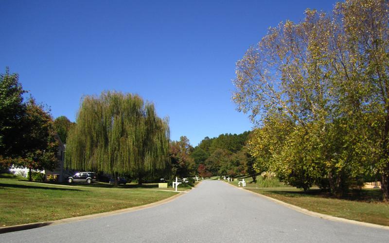Bentley Farms Cumming GA Neighborhood (18).JPG