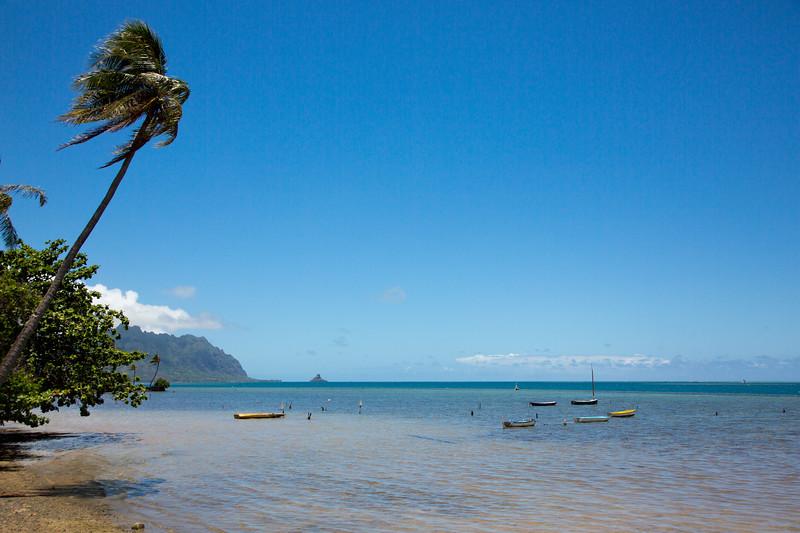 Hawaii - 062212 - 600.jpg